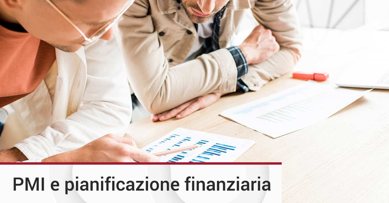 Business plan modello PMI